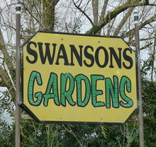 swansons sign